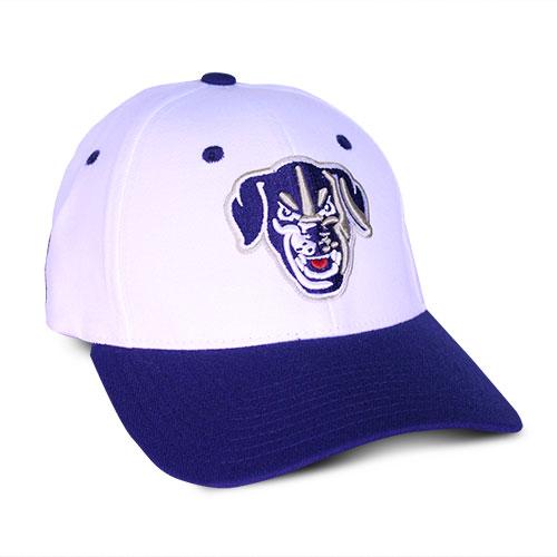 Saltdogs Hat