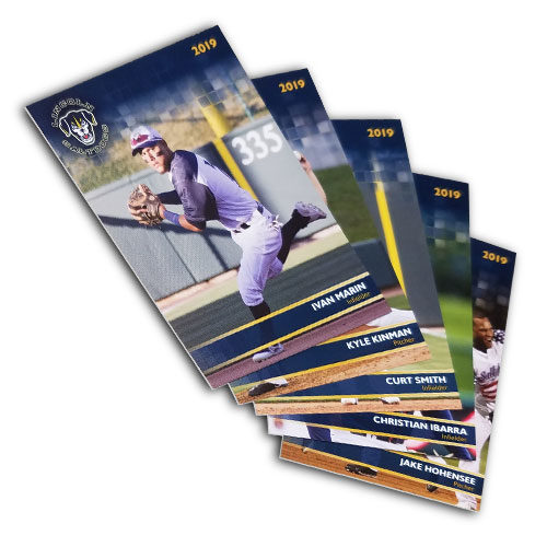2019 Saltdogs Player Cards